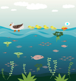 Mother duck teach her baby swimming vector image vector image