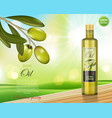 olive oil bottle design on green shiny background vector image