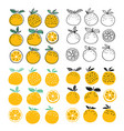 set of oranges fruits vector image vector image