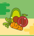 avocado tomato and carrot vegetables healthy food vector image