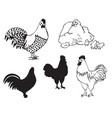 cocks and hen with chickens vector image vector image