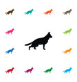 isolated sheepdog icon retriever element vector image vector image