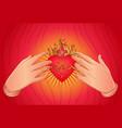 open praying hands around sacred heart jesus vector image