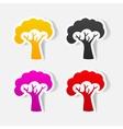 realistic design element tree vector image vector image
