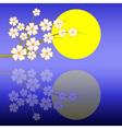 sakuranight vector image vector image