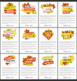 set of sale adverts with autumn foliage and leaves vector image vector image