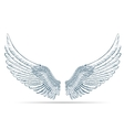 Sketch of wings on white background vector image vector image