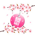 spring sale background with a pink blooming vector image vector image