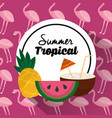 summer tropical banner pineapple watermelon and vector image vector image