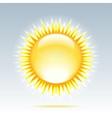 Shiny sun in the sky vector image