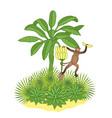 banana palm and monkey vector image vector image