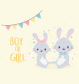bashower cute boy or girl bunnies welcome vector image