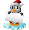 cartoon little penguin holding blank sign vector image
