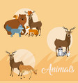 cute animal icons cartoon vector image vector image