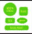 flat grass banner label bubble template vector image vector image