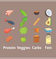 healthy nutrition proteins fats carbohydrates vector image vector image