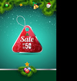 Sale tag on christmas background vector image vector image