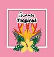 summer tropical flower exotic floral petals poster vector image