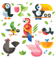 Magic birds and chicks vector image