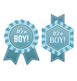 babyborn boy badge or label vector image