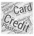 creditcardapplication Word Cloud Concept vector image vector image