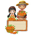 farmer with carrot wooden banner vector image vector image