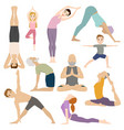 People work out in fitness club yoga classes vector image