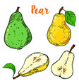 set of colorful pear isolated on white background vector image vector image