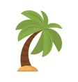 Tree palm beach isolated icon