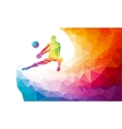 Creative silhouette of volleyball player Team vector image vector image