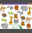 find two same animals educational game for vector image vector image