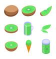 kiwi icons set isometric style vector image vector image