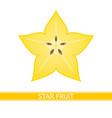 starfruit isolated on white vector image