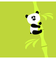 Cute panda on bamboo Baby Green background Flat vector image