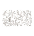 doodle leaves and flowers flat set vector image vector image