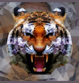 low poly tiger design vector image