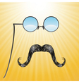 Mustaches and glasses vector image