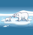 polar bear and her cub standing in the top