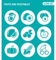 set of round icons white Fruits and vegetables vector image vector image