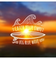 Catch your own big blue wave logo on blurred vector image vector image