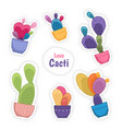 colorful cacti cactus flower potted house plants vector image