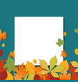 different autumn leaves with blank paper sheet vector image vector image