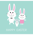 Happy Easter Bunny rabbit familyFather mother and vector image vector image