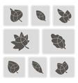 monochrome icons with leaves vector image