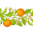 orange branch pattern vector image vector image