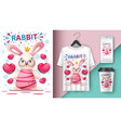 princess rabbit - mockup for your idea vector image vector image