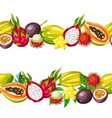 seamless border with exotic tropical fruits vector image vector image