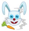 rabbit head vector image