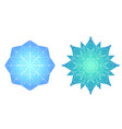 colored snowflakes from ice vector image