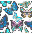 colorful background with butterflies vector image vector image